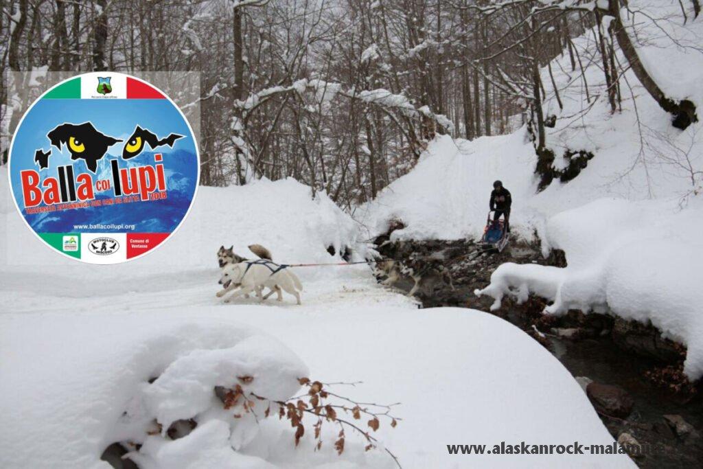 BALLA COI LUPI 2018 – Traversata dell'appennino con cani da slitta